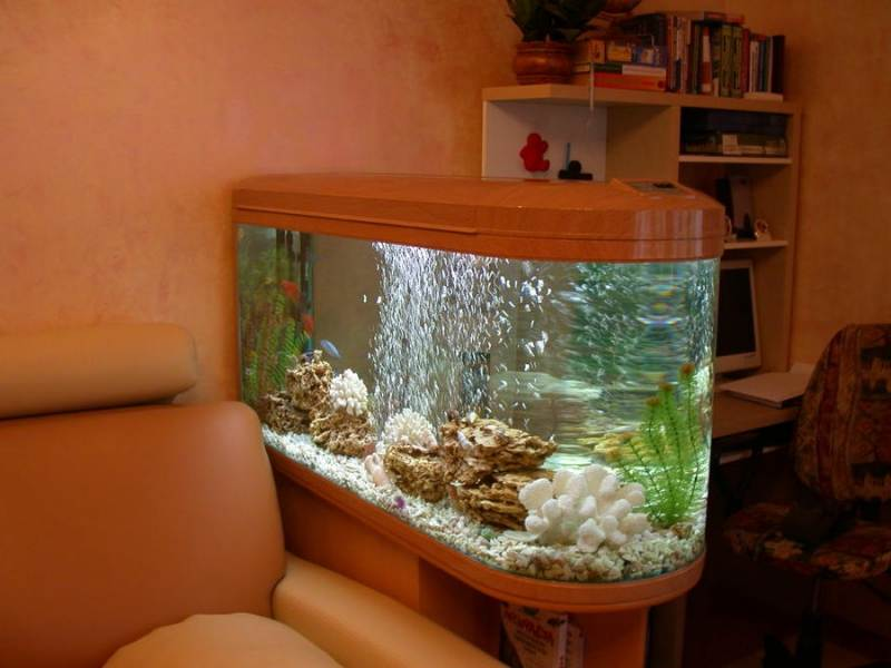 аквариум фен шуй