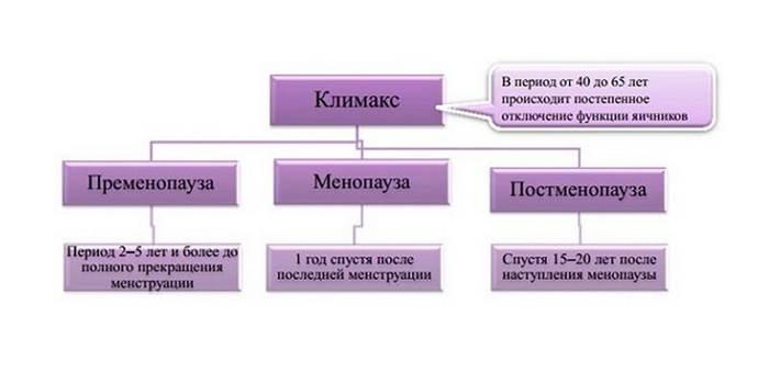 периоды климакса