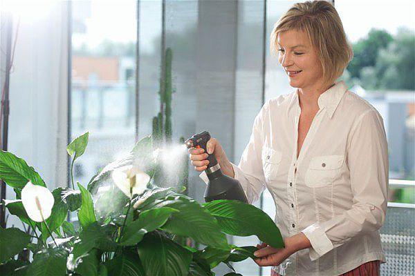 увлажнить цветы пультевизатором